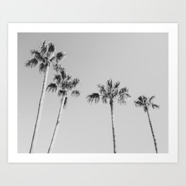 Black Palms // Monotone Gray Beach Photography Vintage Palm Tree Surfer Vibes Home Decor Art Print