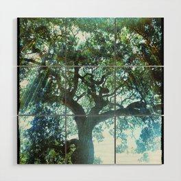 Ramona Oak Tree Wood Wall Art