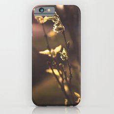 The First Sign of Spring iPhone 6s Slim Case