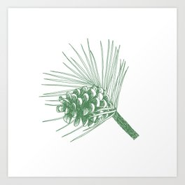 Evergreen drawing (green pine cones on white) Art Print