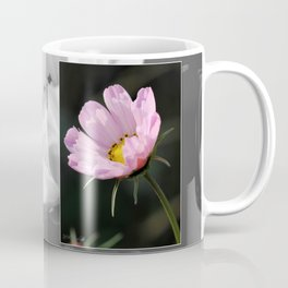 Cosmos named Sea Shells Pink Coffee Mug