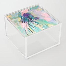 Whyalea 2 Acrylic Box