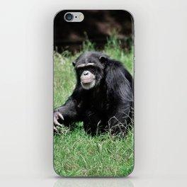 Chimp grin iPhone Skin