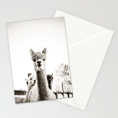 Tio Farm Alpaca 2 Stationery Cards