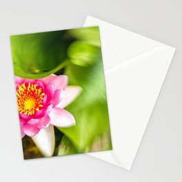 Red Water Lily Stationery Cards