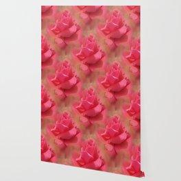 Enchanting Elegant Rose Wallpaper