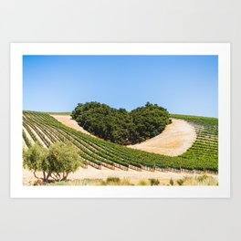 Niner Wine Estates Art Print