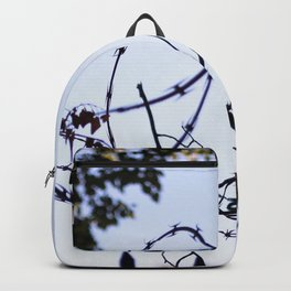 Barbed Wire Backpack
