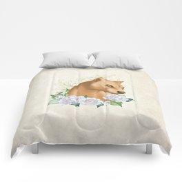 Fossa Comforters
