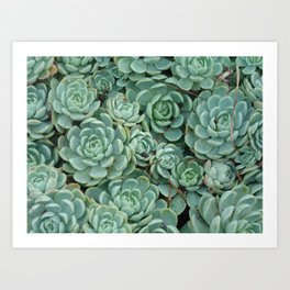 Green valentine Art Print