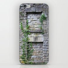 Wall Of Privacy iPhone & iPod Skin