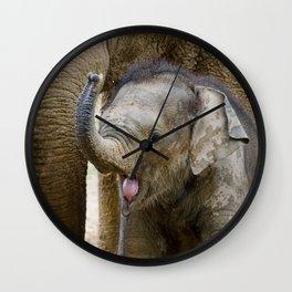Asian elephant baby Wall Clock