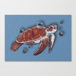 Turtle Swimming, Bubbles, Ocean Blue, Wildlife Art Canvas Print