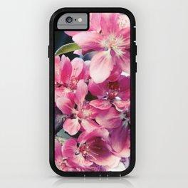 Crabapple Blooms iPhone Case