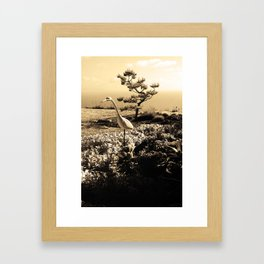 Master in Sepia Framed Art Print