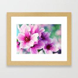 Bold Spring Framed Art Print