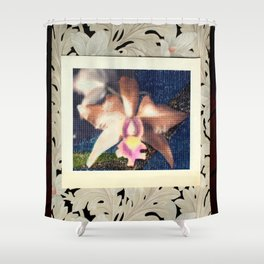 Not Your Usual Corsage Cattleya Shower Curtain