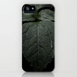 Botanical Still Life Photography Drops On Leaf iPhone Case