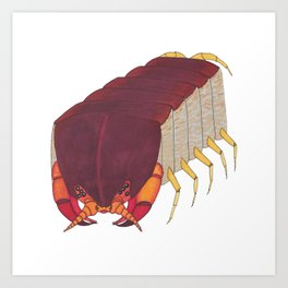 Centipede Cubed Art Print