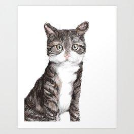 That Cat Art Print