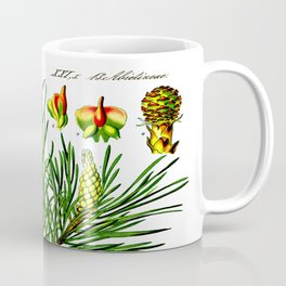 Pinus sylvestris Coffee Mug