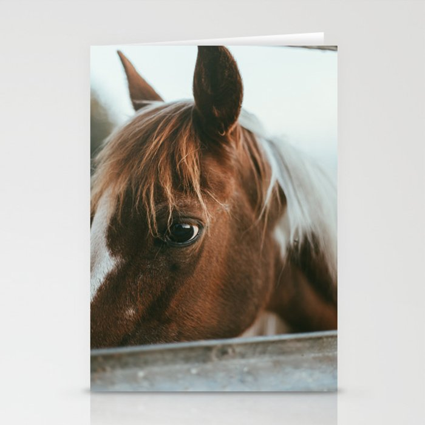crystal the pony Stationery Cards