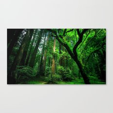 Enchanted forest mood II Canvas Print