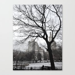 Winter's Peak Canvas Print
