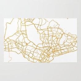 SINGAPORE CITY STREET MAP ART Rug