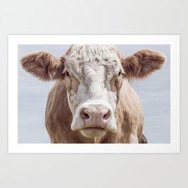 Animal Photography | Cow Portrait Colour | Minimalism | Farm Animals Art Print