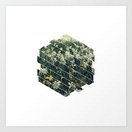 Subtly Flourishing - Hexagon Art Print