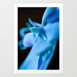 Blue Orchid in Space - Floral Close-up Photography - Tropical Flower Print Art Print