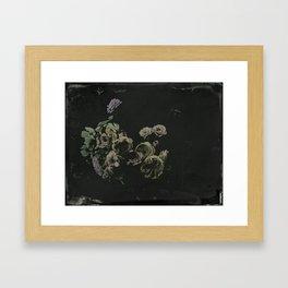 wet plate botanicals #1 Framed Art Print