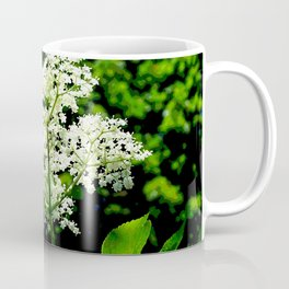Blossom of elder Coffee Mug