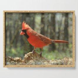 Northern Cardinal Serving Tray