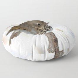 Watercolor Bird, Hermit Thrush 02, Estes Park, Colorado, Chilly Day Floor Pillow