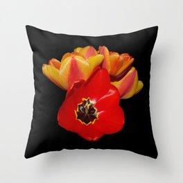tulips shining bright  Throw Pillow