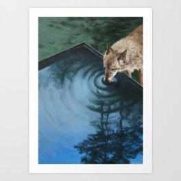 Yusuf Art Print