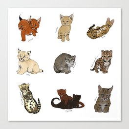 Kittens Worldwide Canvas Print