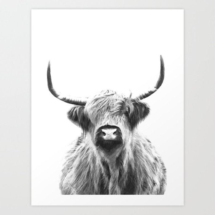Black and White Highland Cow Portrait Art Print