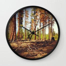 Burnt Ponderosa Forest Wall Clock