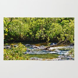 Beautiful river running over rocks Rug