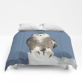 Tip of the iceberg Comforters