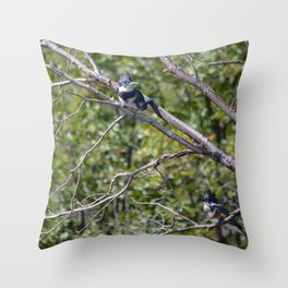 Two 4 One - Belted Kingfisher Throw Pillow