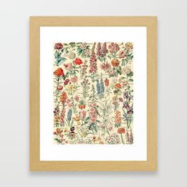 Vintage Floral Drawings // Fleurs by Adolphe Millot XL 19th Century Science Textbook Artwork Framed Art Print