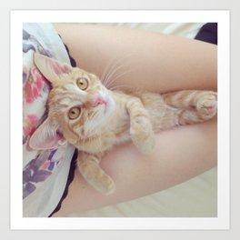 Kitten Cuddle Art Print