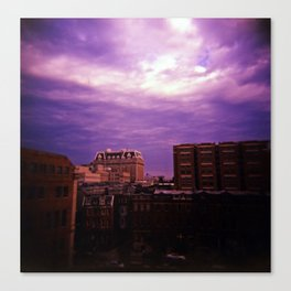 Beauty in Baltimore Canvas Print