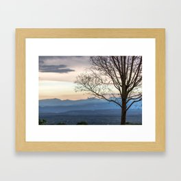 Naked tree on sunset landscape Framed Art Print