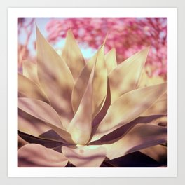 Agave and Cherry Blossoms Art Print