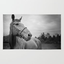 Horses of Instagram Rug